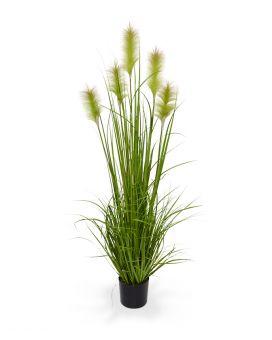 maxifleur kunstplanten